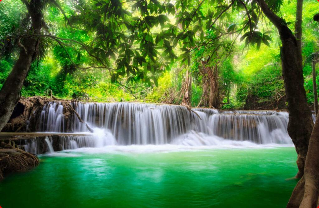 Cascada en medio de bosque formato de imagen jpeg