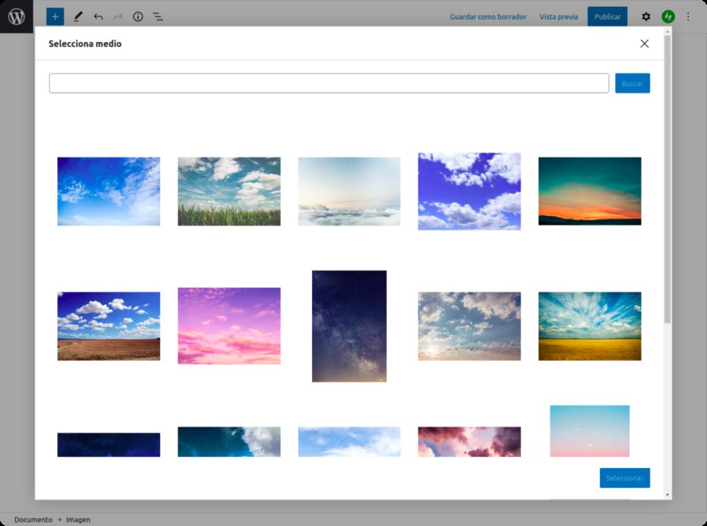 Imágenes gratuitas de Pexels